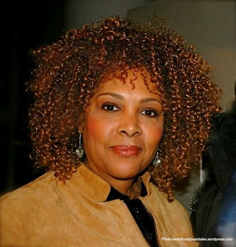 Award-winning screenwriter/director, Julie Dash