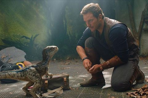 Chris Pratt returns to the Jurassic World Theme Park in Jurassic World: Fallen Kingdom